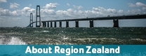 Politics and the Organisation of Region Zealand